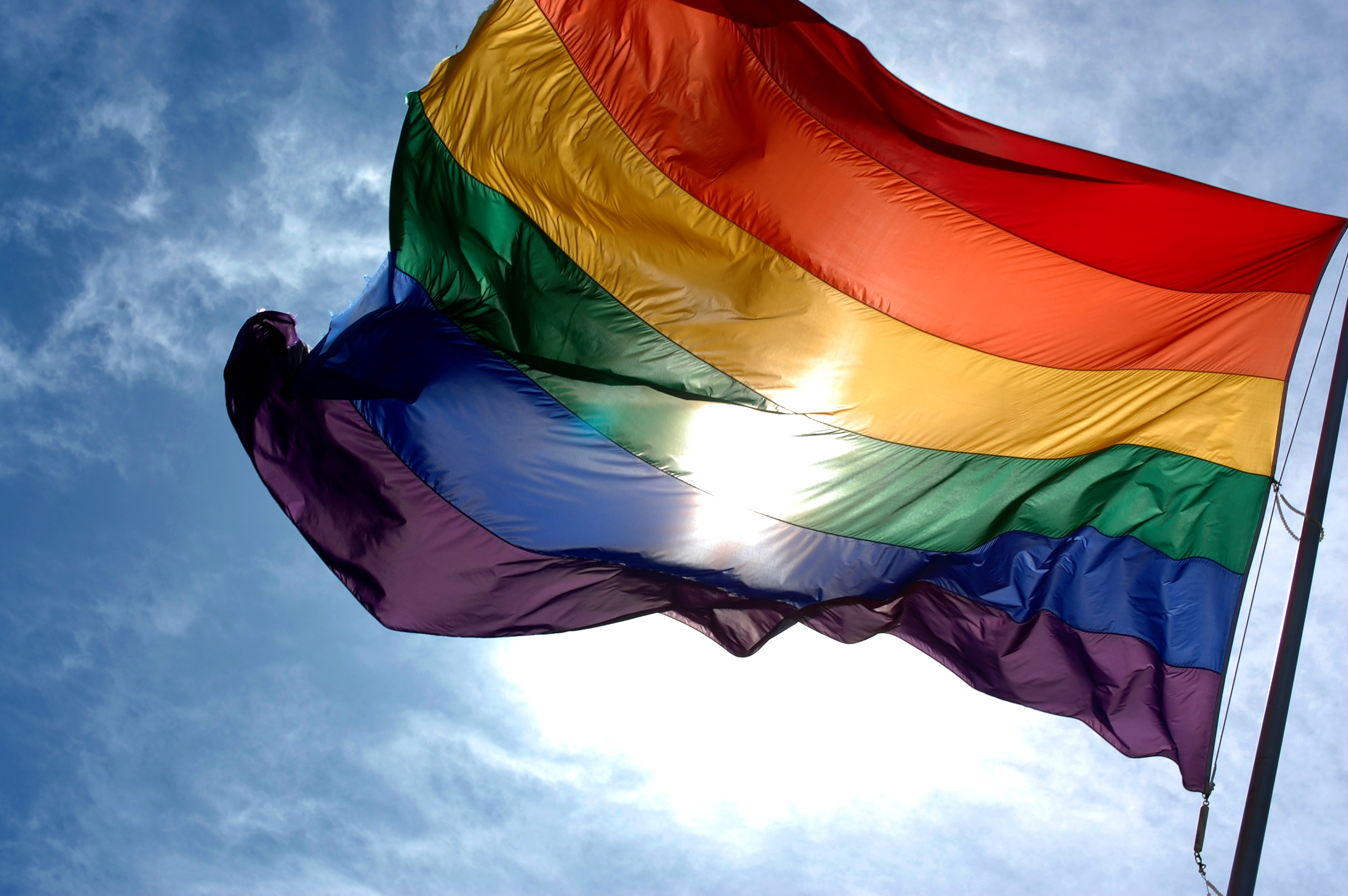 LGBT Flag for Equality and Diversity