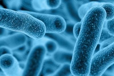 Legionella Online Training: Protecting Businesses and the General Public