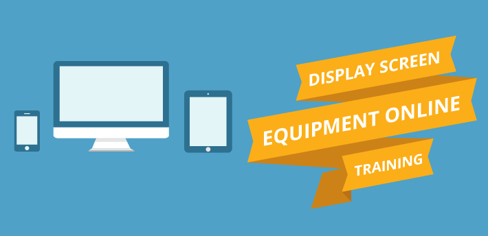 Display Screen Equipment Online Training
